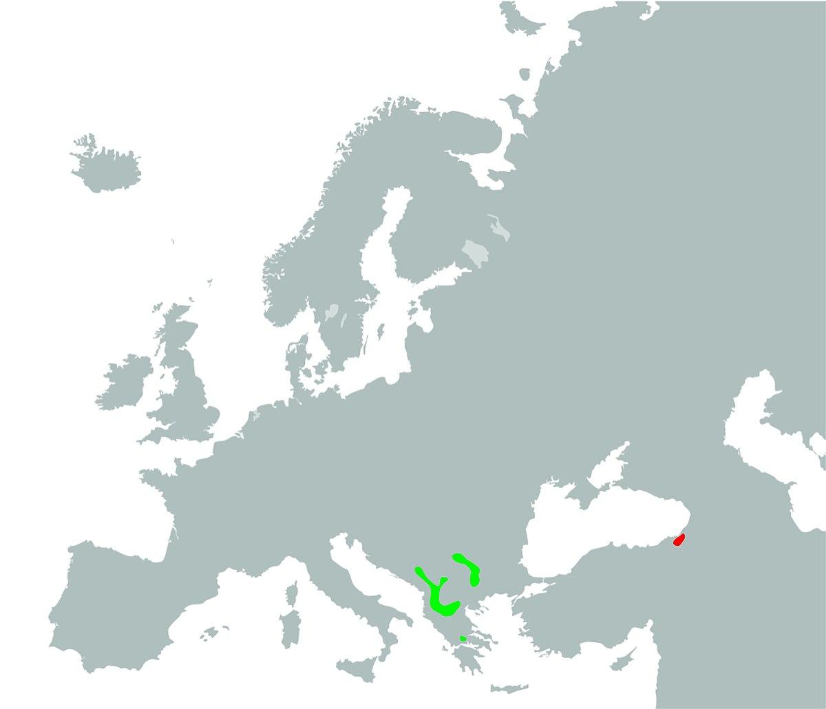 Balkanska masnica
