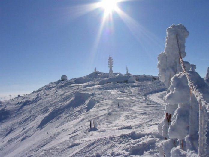Pančićev vrh