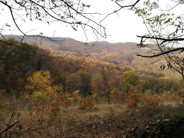 Planina Kotlenik