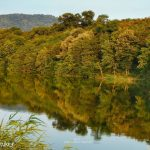 Pariguz jezero