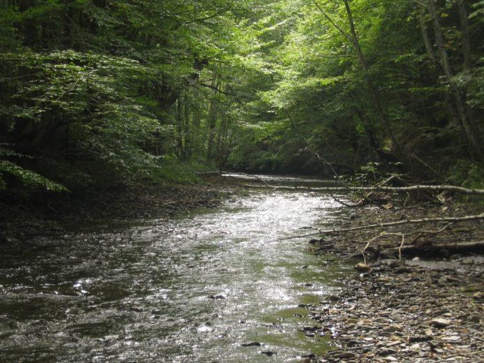 Reka Nošnica