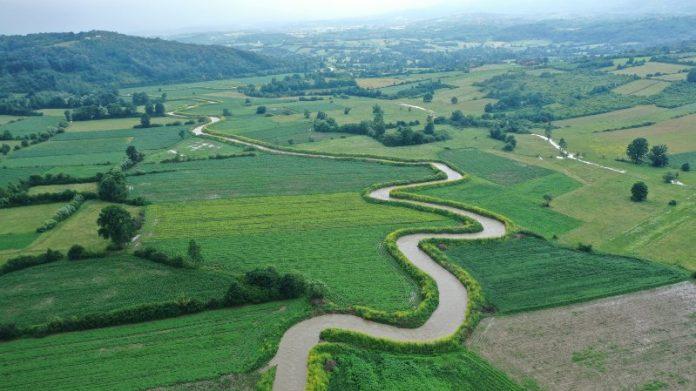 Reka Gruža