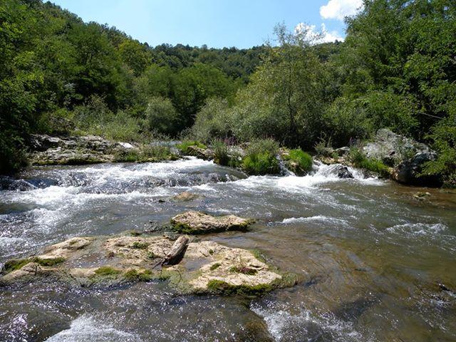 Reka Lužnica